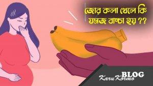 জোড়া কলা খেলে কি যমজ বাচ্চা হয় karukormo blog