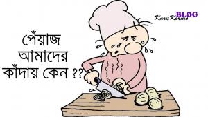 পেঁয়াজ-কাটলে-কেন-চোখে-জল-আসে-karukormo-blog